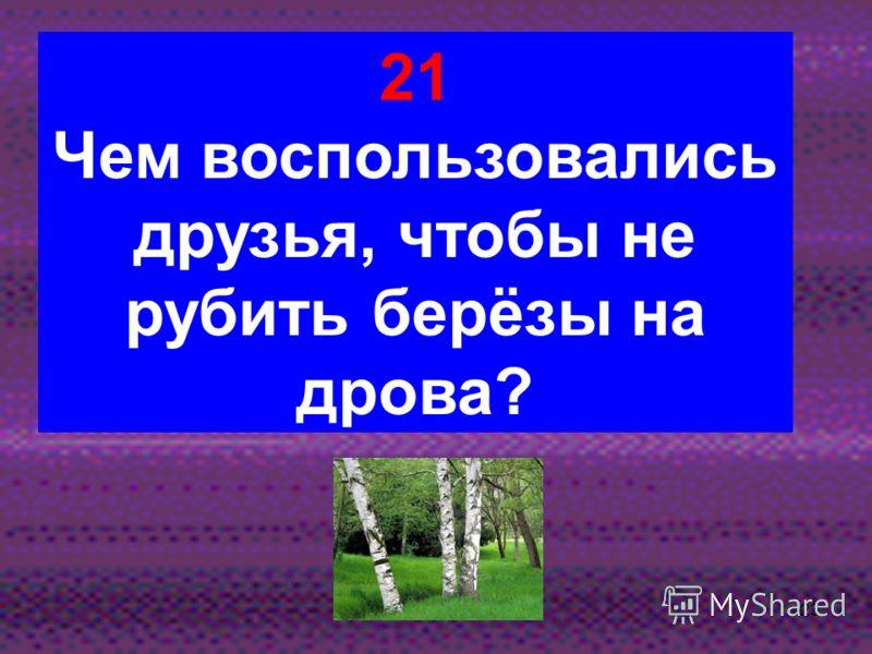 22 20 Какие дрова кот считал самыми лучшими?
