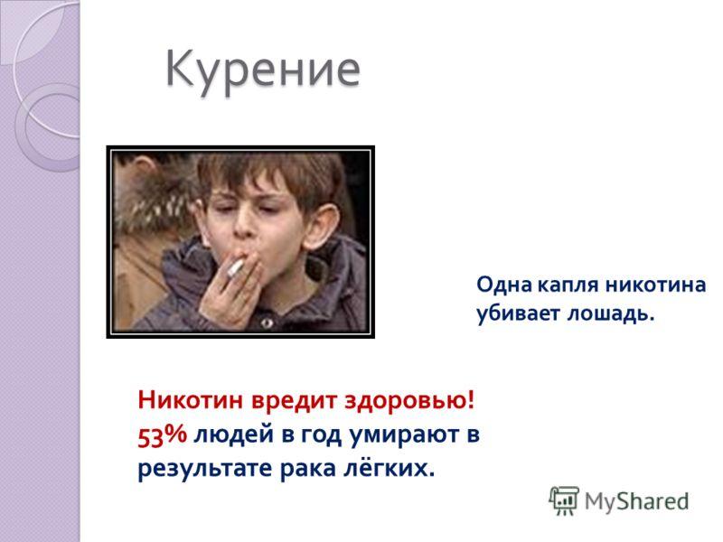 Курение Курение Одна капля никотина убивает лошадь. Никотин вредит здоровью! 53% людей в год умирают в результате рака лёгких.