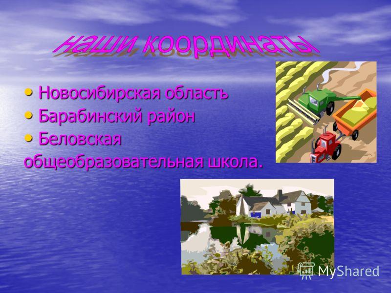 Новосибирская область Новосибирская область Барабинский район Барабинский район Беловская Беловская общеобразовательная школа.