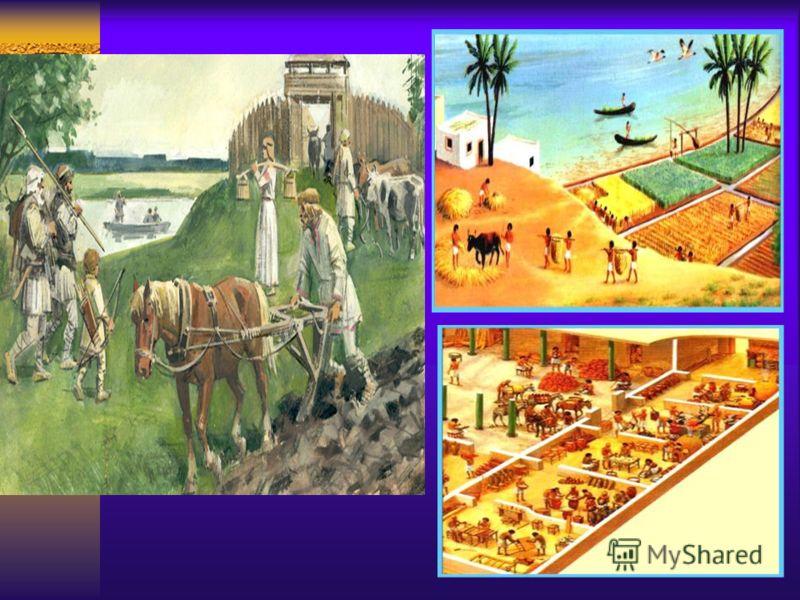 Первобытный человек много работал. Со временем он понял, что можно обрабатывать землю и получать урожай, можно заниматься скотоводством и иметь мясо. Труд стал более производительным. Появились земледельческие орудия, скот всё больше использовался дл