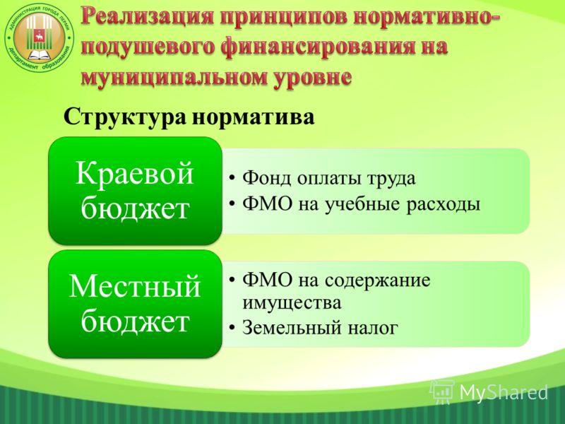 Фонд оплаты труда ФМО на учебные расходы Краевой бюджет ФМО на содержание имущества Земельный налог Местный бюджет Структура норматива