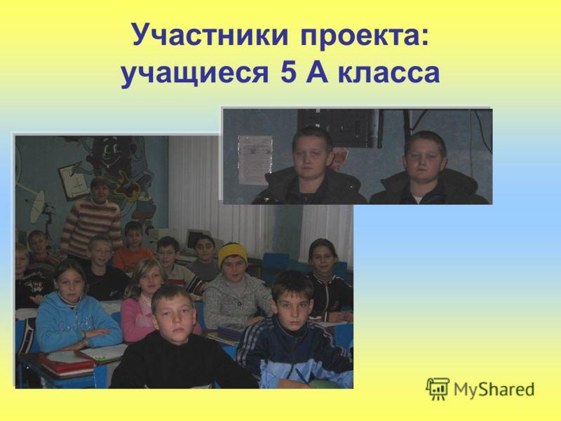Участники проекта: учащиеся 5 А класса