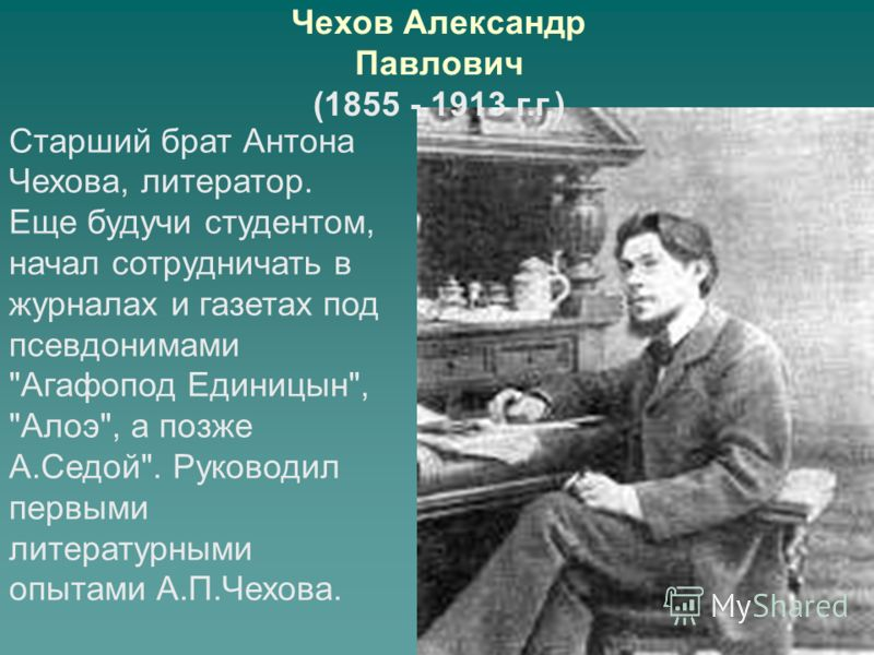 Чехов Александр Павлович (1855 - 1913 г.г.) Старший брат Антона Чехова, литератор. Еще будучи студентом, начал сотрудничать в журналах и газетах под псевдонимами