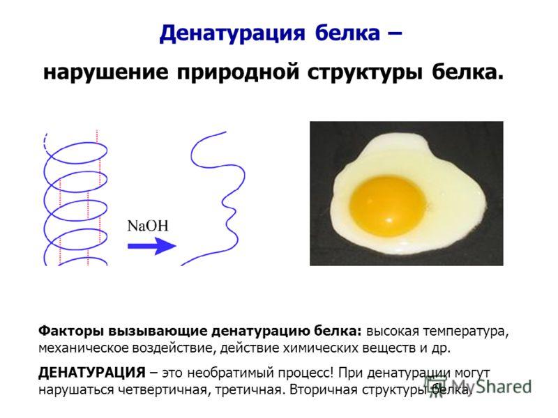 Денатурация белка – нарушение природной структуры белка. Факторы вызывающие денатурацию белка: высокая температура, механическое воздействие, действие химических веществ и др. ДЕНАТУРАЦИЯ – это необратимый процесс! При денатурации могут нарушаться че