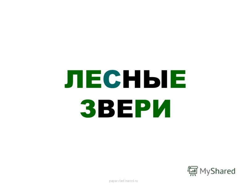 ЛЕСНЫЕ ЗВЕРИ papa-vlad.narod.ru