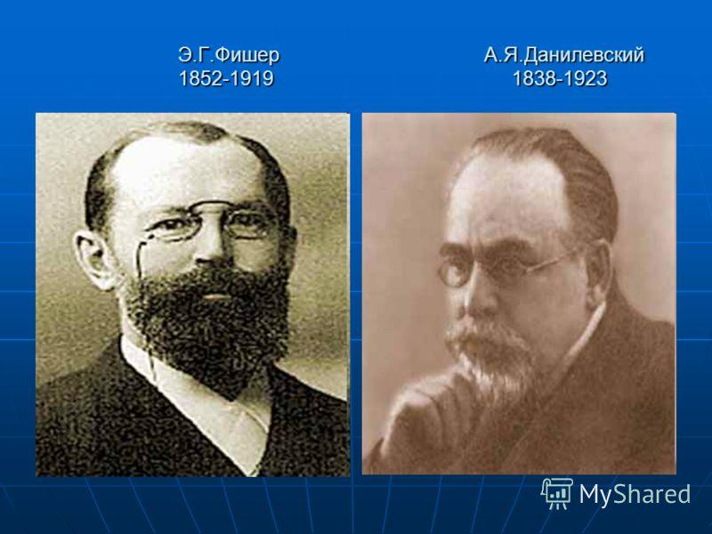 Э.Г.Фишер А.Я.Данилевский 1852-1919 1838-1923 Э.Г.Фишер А.Я.Данилевский 1852-1919 1838-1923