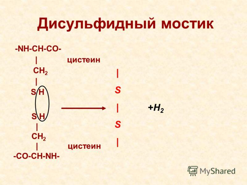 Дисульфидный мостик -NH-CH-CO- | цистеин CH 2 | S H |S|S||S|S| +H 2 S H | CH 2 | цистеин -CO-CH-NH-