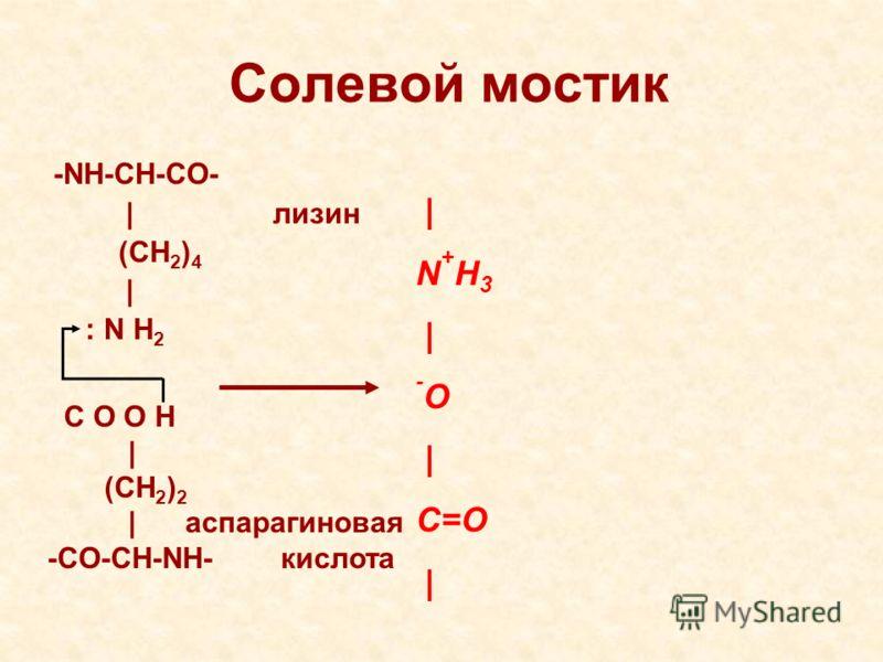 Солевой мостик -NH-CH-CO- | лизин (CH 2 ) 4 | : N H 2 | N + H 3 | - O | C=O | C O O H | (CH 2 ) 2 | аспарагиновая -CO-CH-NH- кислота