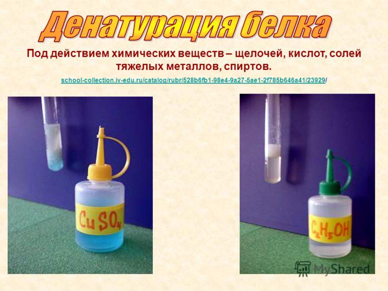 Под действием химических веществ – щелочей, кислот, солей тяжелых металлов, спиртов. school-collection.iv-edu.ru/catalog/rubr/528b6fb1-98e4-9a27-5ae1-2f785b646a41/23929school-collection.iv-edu.ru/catalog/rubr/528b6fb1-98e4-9a27-5ae1-2f785b646a41/2392
