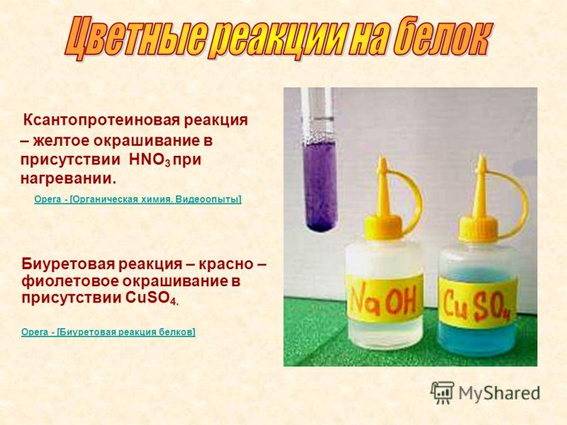 Ксантопротеиновая реакция – желтое окрашивание в присутствии НNO 3 при нагревании. Opera - [Органическая химия. Видеоопыты] Биуретовая реакция – красно – фиолетовое окрашивание в присутствии CuSO 4. Opera - [Биуретовая реакция белков]