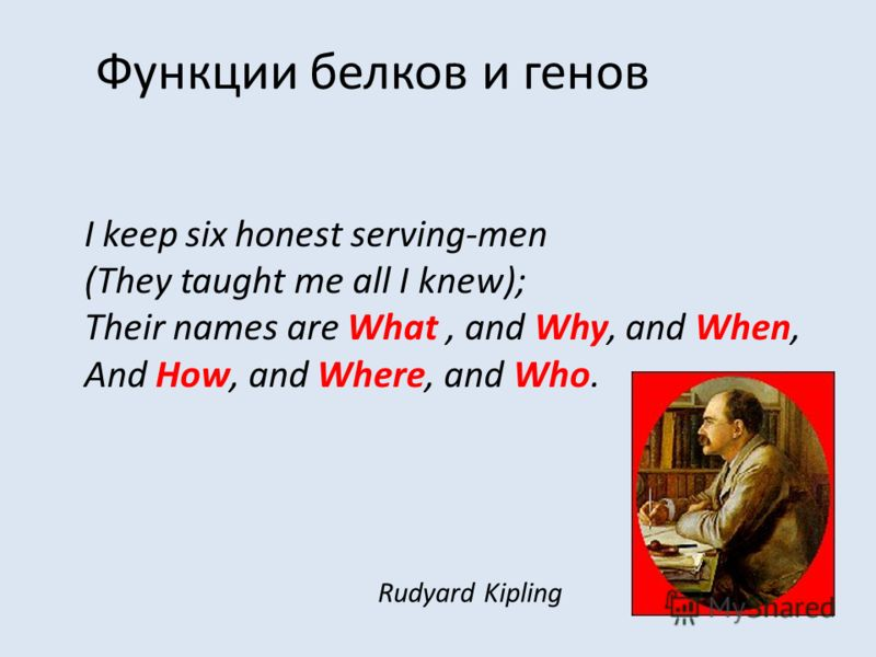 Функции белков и генов I keep six honest serving-men (They taught me all I knew); Their names are What, and Why, and When, And How, and Where, and Who. Rudyard Kipling
