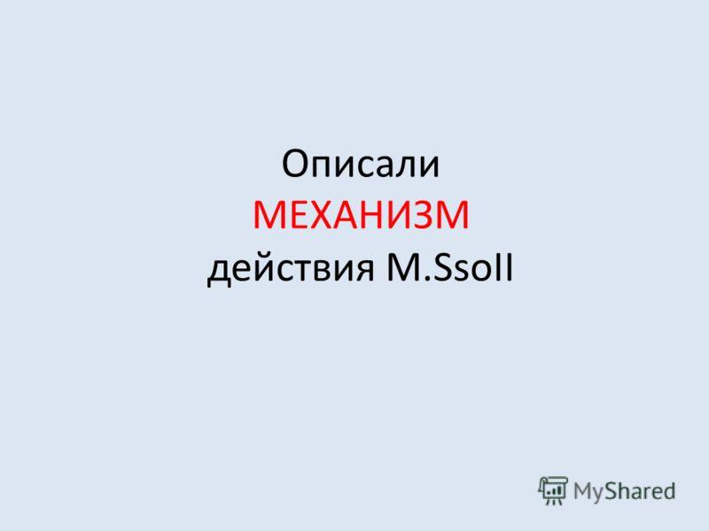 Описали МЕХАНИЗМ действия M.SsoII