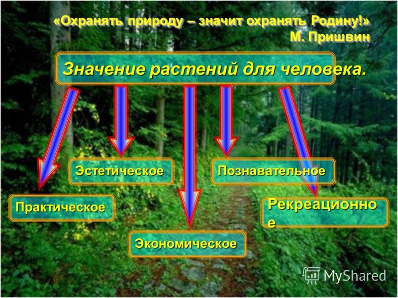 «Охранять природу – значит охранять Родину!» М. Пришвин «Охранять природу – значит охранять Родину!» М. Пришвин Значение растений для человека. Рекреационно е Практическое Экономическое ЭстетическоеПознавательное