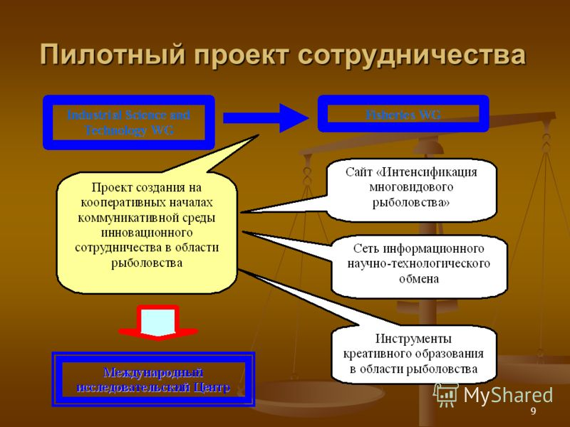 9 Пилотный проект сотрудничества