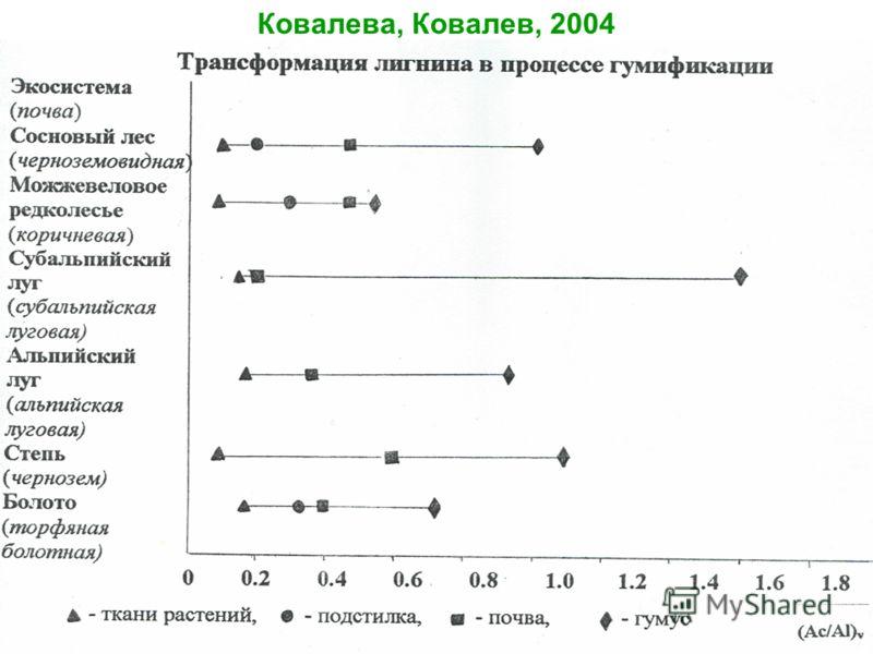 Ковалева, Ковалев, 2004