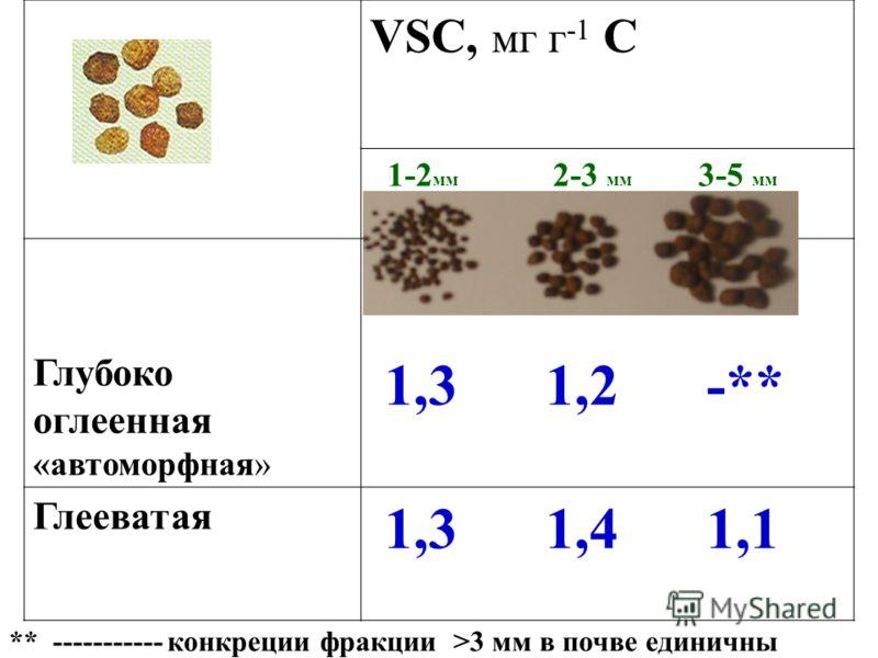 VSC, мг г -1 С 1-2 мм 2-3 мм 3-5 мм Глубоко оглеенная «автоморфная» 1,3 1,2 -** Глееватая 1,3 1,4 1,1 ** ----------- конкреции фракции >3 мм в почве единичны