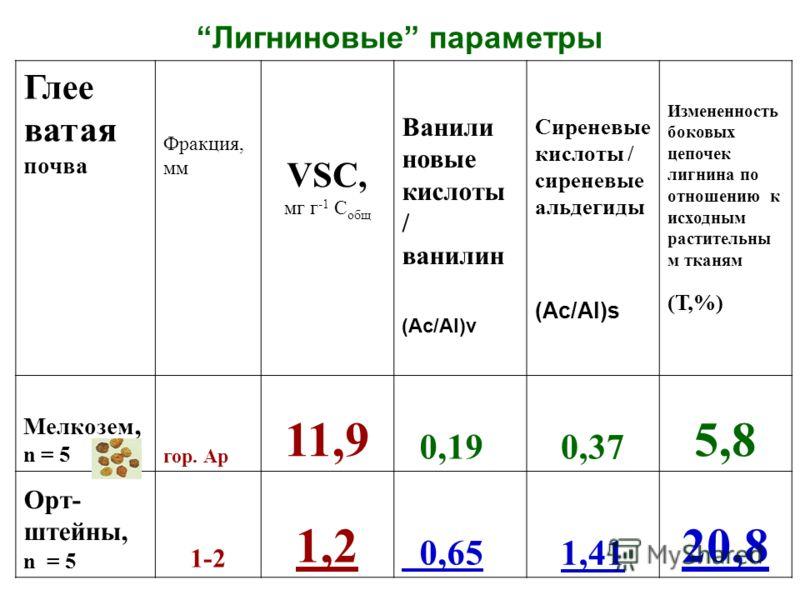 Лигниновые параметры Глее ватая почва Фракция, мм VSC, мг г -1 С общ Ванили новые кислоты / ванилин (Ac/Al)v Сиреневые кислоты / сиреневые альдегиды (Ac/Al)s Измененность боковых цепочек лигнина по отношению к исходным растительны м тканям (Т,%) Мелк