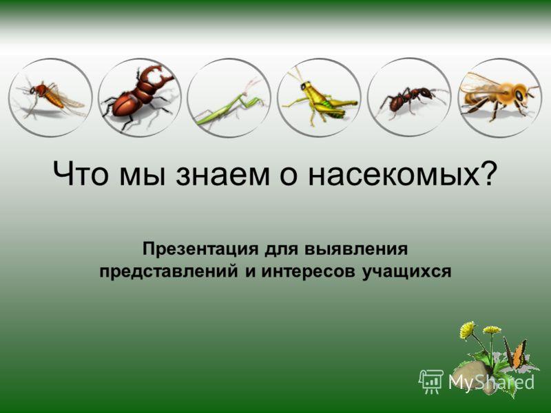 Что мы знаем о насекомых? Презентация для выявления представлений и интересов учащихся