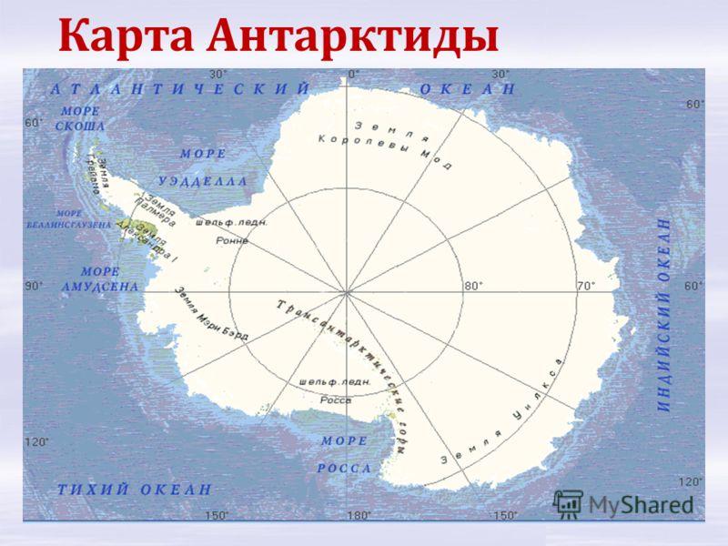 Антарктида открыта под руководством