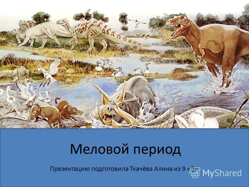 Меловой период Презентацию подготовила Ткачёва Алина из 9 «В»