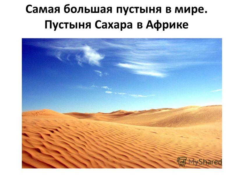 Самая большая пустыня в мире. Пустыня Сахара в Африке