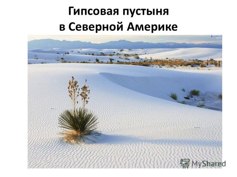 Гипсовая пустыня в Северной Америке