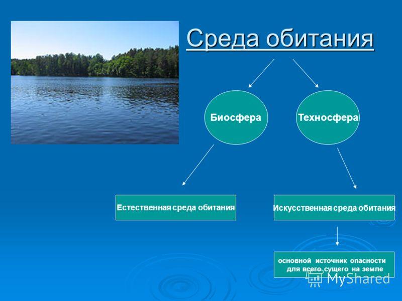 Среда обитания Техносфера Естественная среда обитанияИскусственная среда обитания Биосфера основной источник опасности для всего сущего на земле