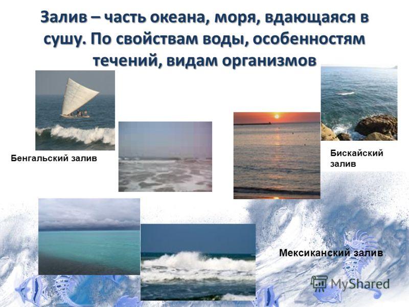 Залив – часть океана, моря, вдающаяся в сушу. По свойствам воды, особенностям течений, видам организмов Бенгальский залив Бискайский залив Мексиканский залив