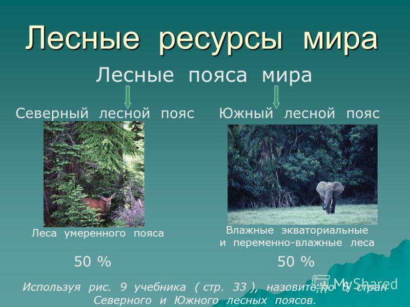 Лесные ресурсы мира Лесные пояса мира Северный лесной поясЮжный лесной пояс Леса умеренного пояса Влажные экваториальные и переменно-влажные леса Используя рис. 9 учебника ( стр. 33 ), назовите по 5 стран Северного и Южного лесных поясов. 50 %