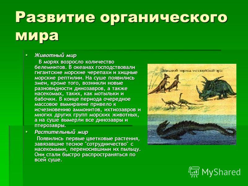 Развитие органического мира Животный мир Животный мир В морях возросло количество белемнитов. В океанах господствовали гигантские морские черепахи и хищные морские рептилии. На суше появились змеи, кроме того, возникли новые разновидности динозавров,