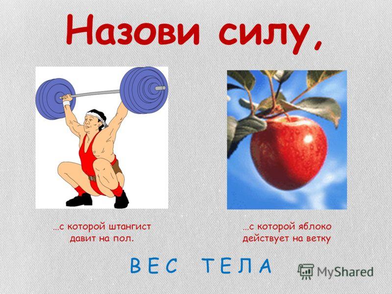 Назови силу, …с которой штангист давит на пол. …с которой яблоко действует на ветку В Е С Т Е Л А