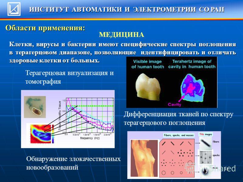 12 МЕДИЦИНА Терагерцовая визуализация и томография Дифференциация тканей по спектру терагерцового поглощения Обнаружение злокачественных новообразований Клетки, вирусы и бактерии имеют специфические спектры поглощения в терагерцовом диапазоне, позвол