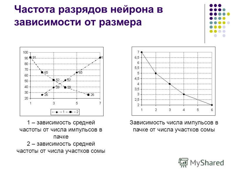 Частота разрядов нейрона в зависимости от размера 1 – зависимость средней частоты от числа импульсов в пачке 2 – зависимость средней частоты от числа участков сомы Зависимость числа импульсов в пачке от числа участков сомы