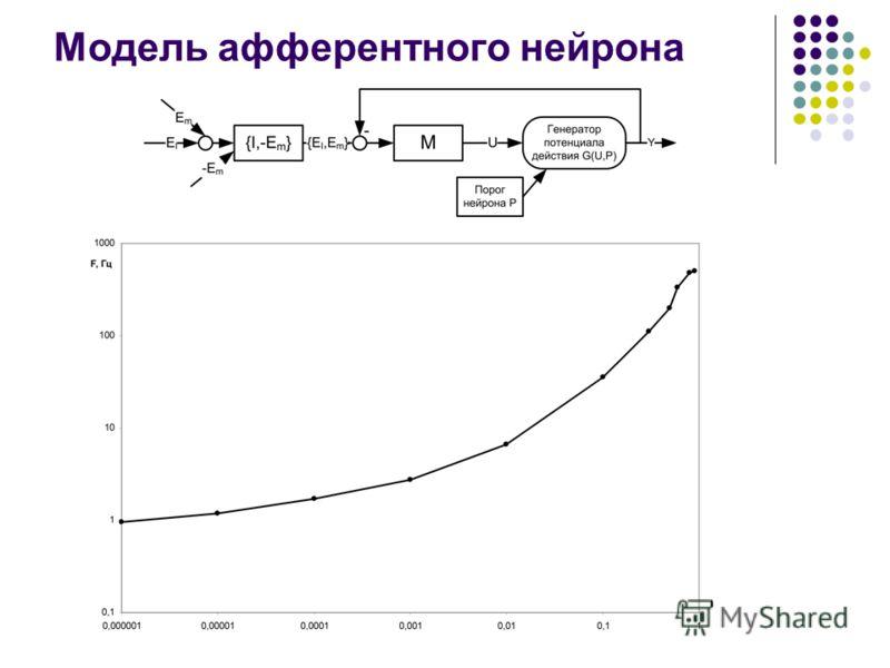 Модель афферентного нейрона