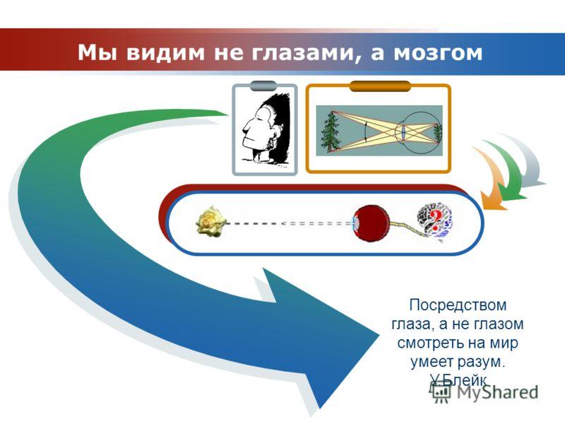 www.themegallery.com Company Logo Таможня Посредством глаза, а не глазом смотреть на мир умеет разум. У.Блейк Мы видим не глазами, а мозгом