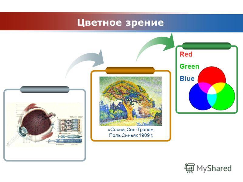 www.themegallery.com Company Logo Red Green Blue Цветное зрение «Сосна, Сен-Тропе», Поль Синьяк 1909 г.