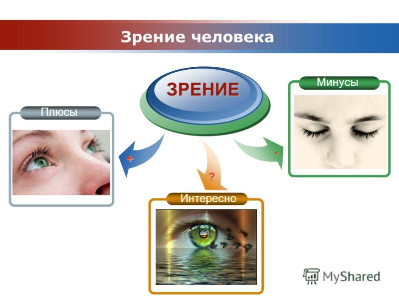 www.themegallery.com Company Logo ЗРЕНИЕ Зрение человека Плюсы Минусы Интересно ? + -