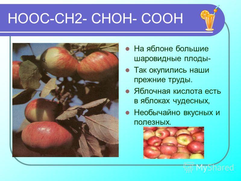 НООС-СН2- СНОН- СООН На яблоне большие шаровидные плоды- Так окупились наши прежние труды. Яблочная кислота есть в яблоках чудесных, Необычайно вкусных и полезных.
