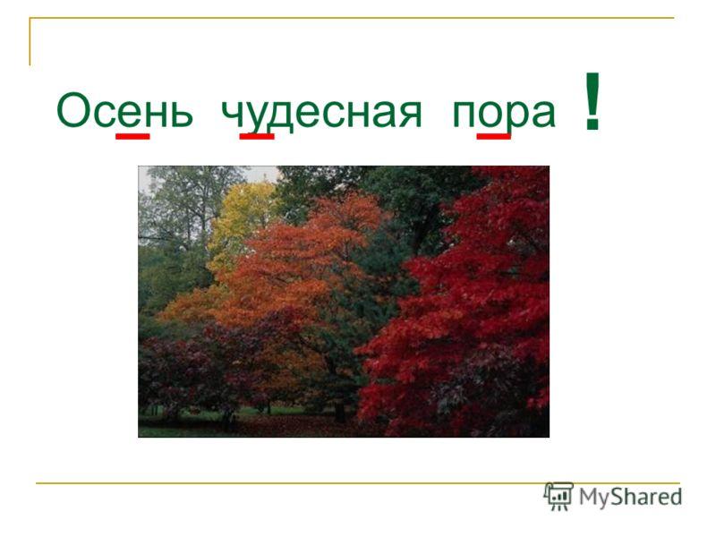 Осень чудесная пора !