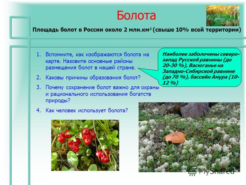 Болота Площадь болот в России около 2 млн.км 2 (свыше 10% всей территории) 1.Вспомните, как изображаются болота на карте. Назовите основные районы размещения болот в нашей стране. 2.Каковы причины образования болот? 3.Почему сохранение болот важно дл
