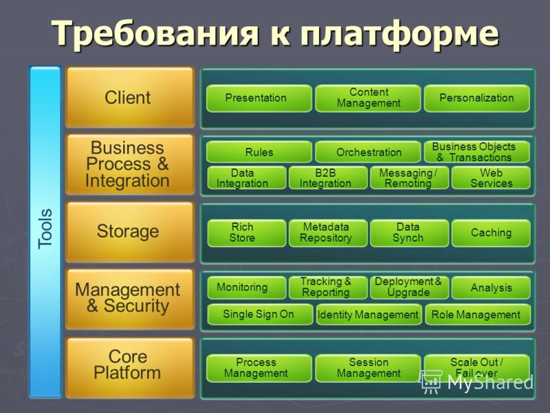 Rich Store Metadata Repository Data Synch Caching Требования к платформе Client Business Process & Integration Storage Management & Security Core Platform Monitoring Tracking & Reporting Deployment & Upgrade Analysis Role ManagementIdentity Managemen
