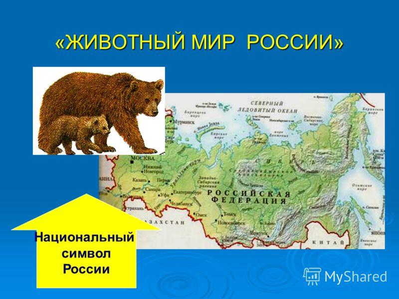 «ЖИВОТНЫЙ МИР РОССИИ» Национальный символ России