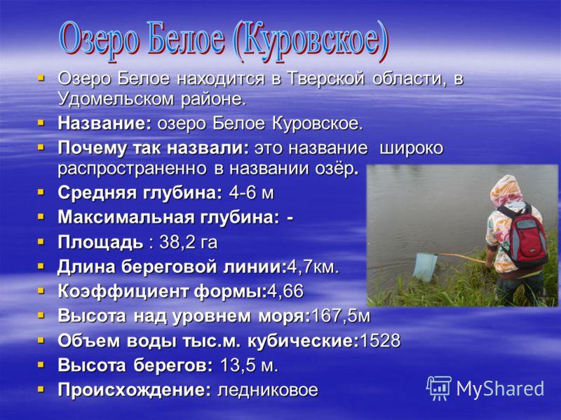 Озеро Белое находится в Тверской области, в Удомельском районе. Озеро Белое находится в Тверской области, в Удомельском районе. Название: озеро Белое Куровское. Название: озеро Белое Куровское. Почему так назвали: это название широко распространенно