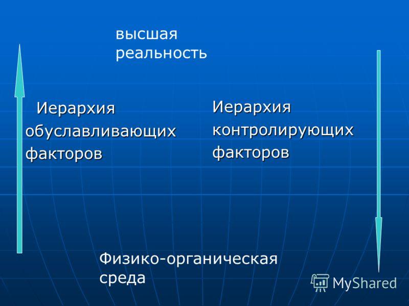 Иерархия Иерархияобуславливающихфакторов Иерархияконтролирующихфакторов высшая реальность Физико-органическая среда
