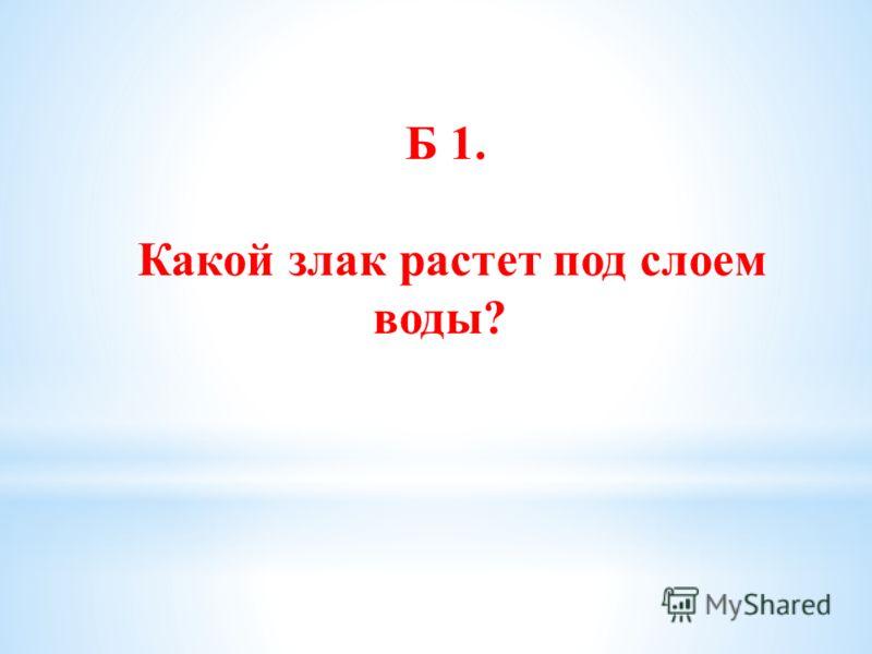 Б 1. Какой злак растет под слоем воды?