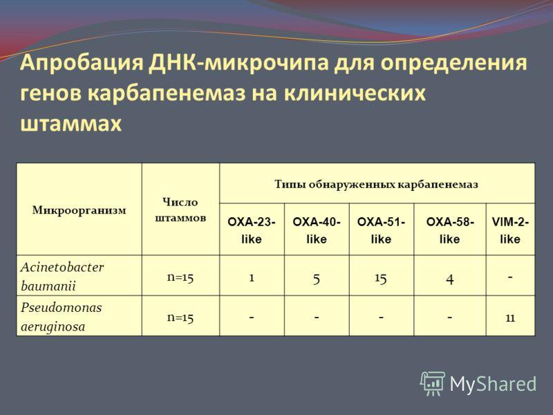 Апробация ДНК-микрочипа для определения генов карбапенемаз на клинических штаммах Микроорганизм Число штаммов Типы обнаруженных карбапенемаз OXA-23- like OXA-40- like OXA-51- like OXA-58- like VIM-2- like Acinetobacter baumanii n=15 1515154- Pseudomo