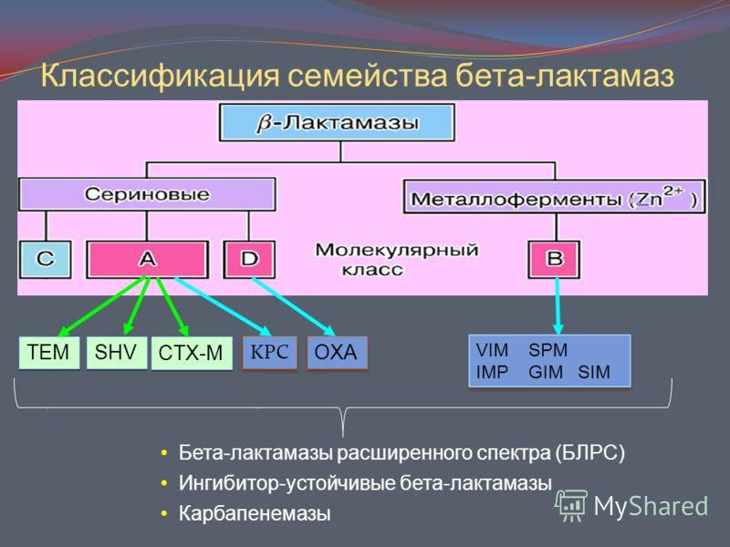 Классификация семейства бета-лактамаз KPC OXA VIM SPM IMP GIM SIM VIM SPM IMP GIM SIM TEM SHV CTX-M Бета-лактамазы расширенного спектра (БЛРС) Ингибитор-устойчивые бета-лактамазы Карбапенемазы