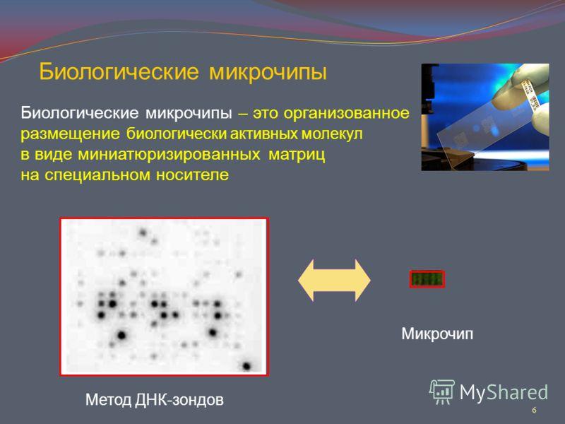 6 Биологические микрочипы Биологические микрочипы – это организованное размещение биологически активных молекул в виде миниатюризированных матриц на специальном носителе Метод ДНК-зондов Микрочип