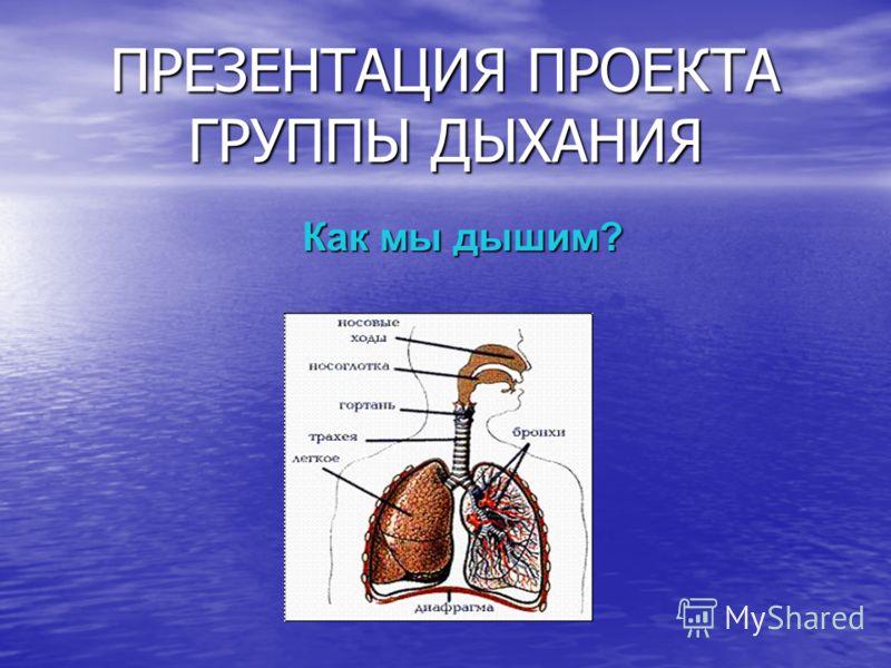 Чем мы дышим презентация