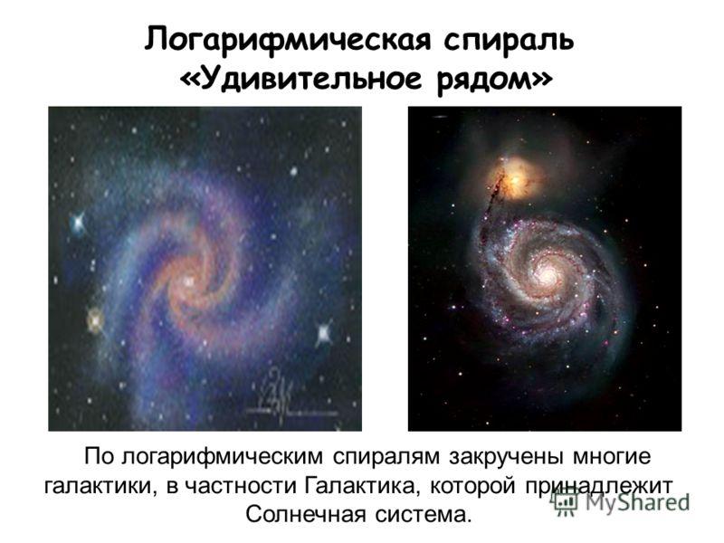 Логарифмическая спираль «Удивительное рядом» По логарифмическим спиралям закручены многие галактики, в частности Галактика, которой принадлежит Солнечная система.
